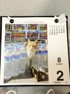 ネコよけ ペットボトル