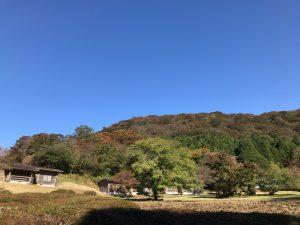 箱根紅葉 2016年11月3日 1