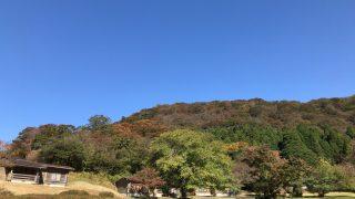 箱根の紅葉は色づき始め、仙石原のすすきは見ごろが終わりそうでした