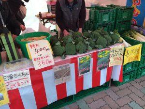 三浦海岸桜まつり 野菜