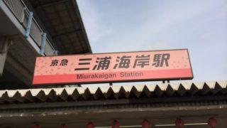 河津桜が三浦海岸で見れる三浦海岸桜まつり
