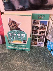 ベローチェの2020年2月の猫ファイルキャンペーン1