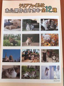 ベローチェの2020年2月の猫ファイルキャンペーン 種類